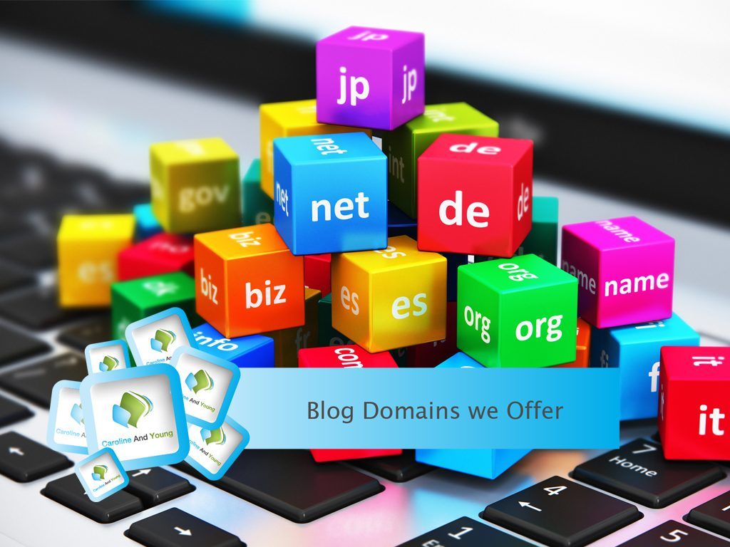 Blog Domains we Offer